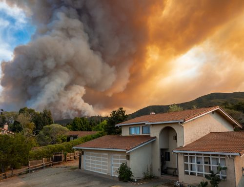 Stay Safe and Healthy During Wildfire Season